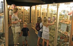 Museum-du-coquillage
